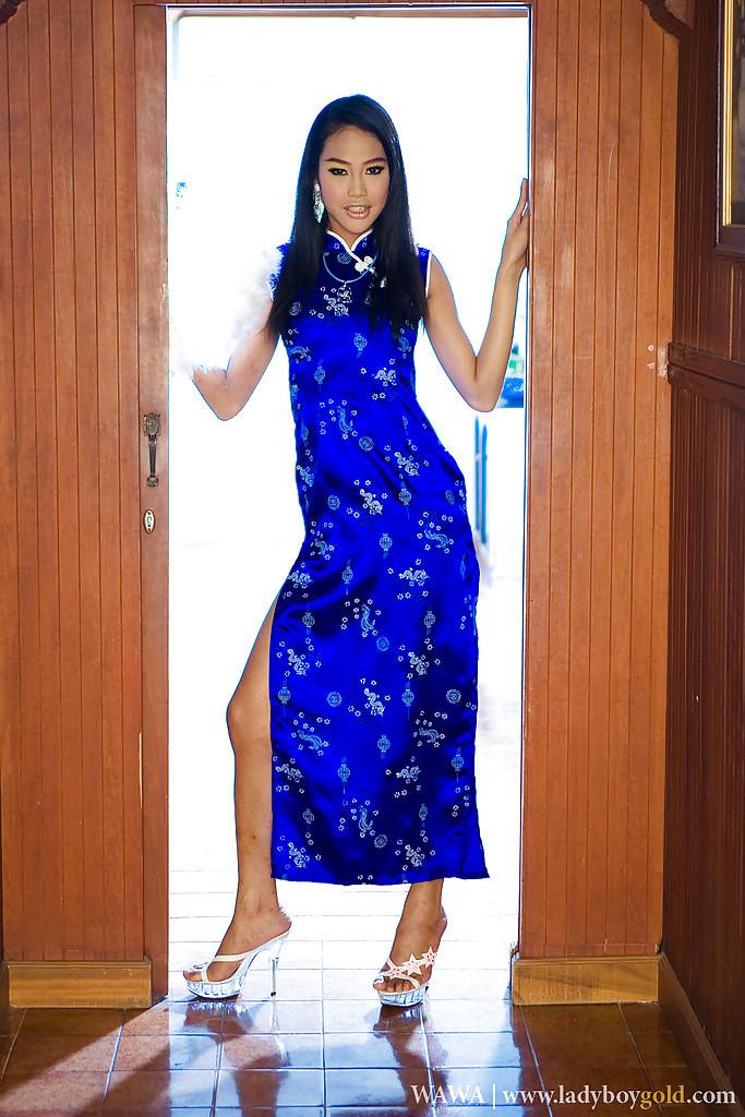 Beautiful Asian Ladyboy Wawa Still Has Braces On Her Teen T-Girl Teeth