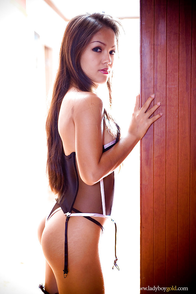 Beautiful Asian T-Girl Amy Showing Off Her Provoking Lingerie And Long Legs