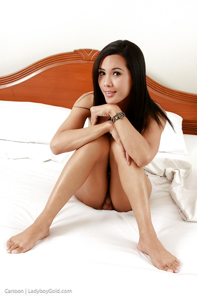 Beautiful Thai T-Girl Cartoon 2 Jerking Small Shecock In Stockings
