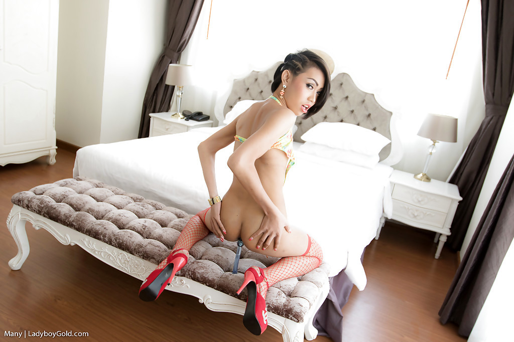 Beautiful Thai TGirl Many Giving A Voluptuous POV Blowjob To Guy