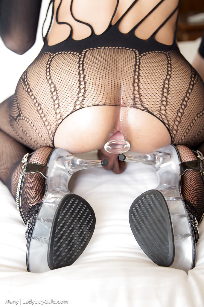 Beautiful Thai Tgirl Many Spreading Her Bum Cheeks And Sucking Dick Tool