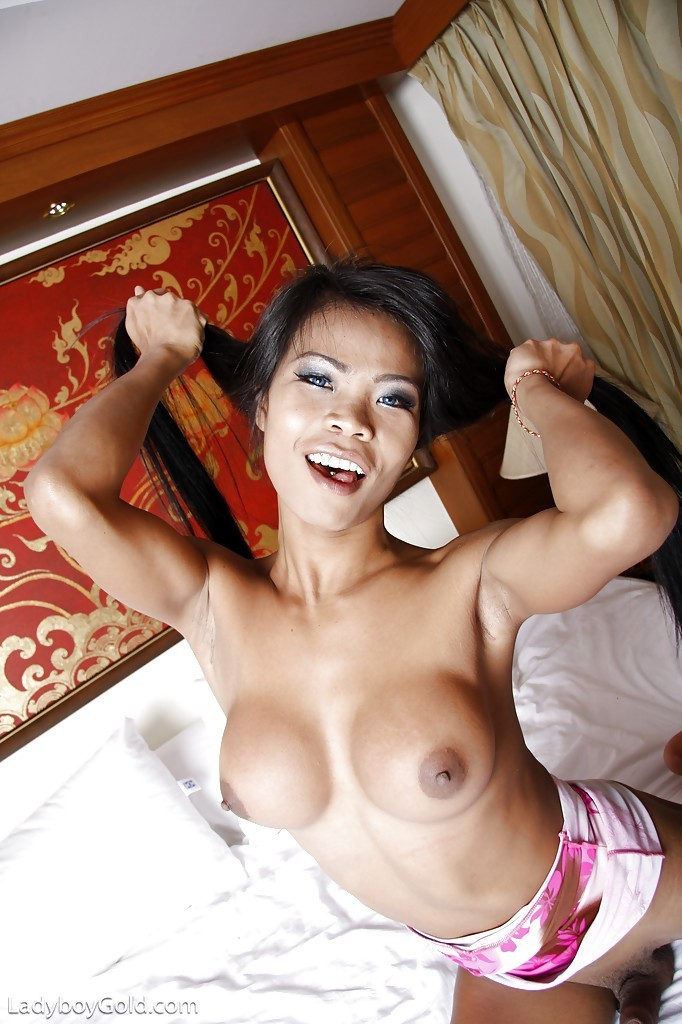 Busty Asian Tgirl Paeng Toying Her Horny Ass-Hole With Sex Vibrator