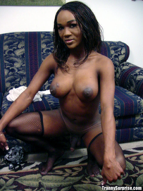 Busty Ebony T-Girl Alicia Showing Of Her Huge Tits In Stockings