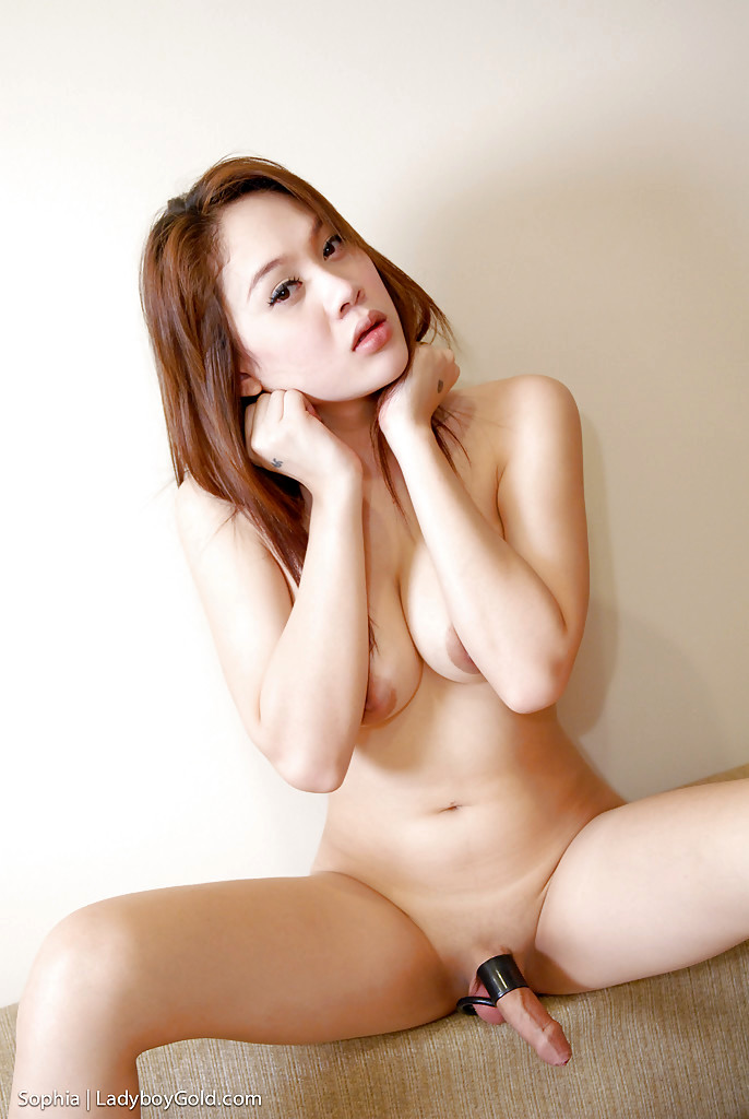Busty Thai T-Girl Sophia Posing With Her Enormous Melons And Spreading