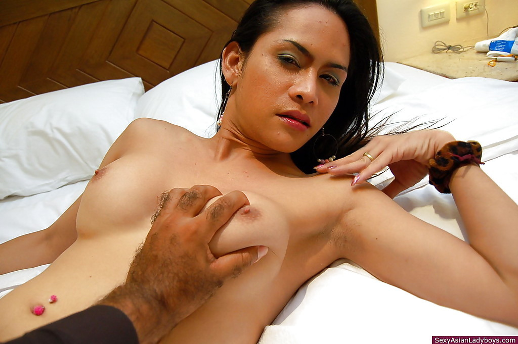 Busty Thai Tranny Getting Her Tight Asshole Pummeled By An Eager Dick