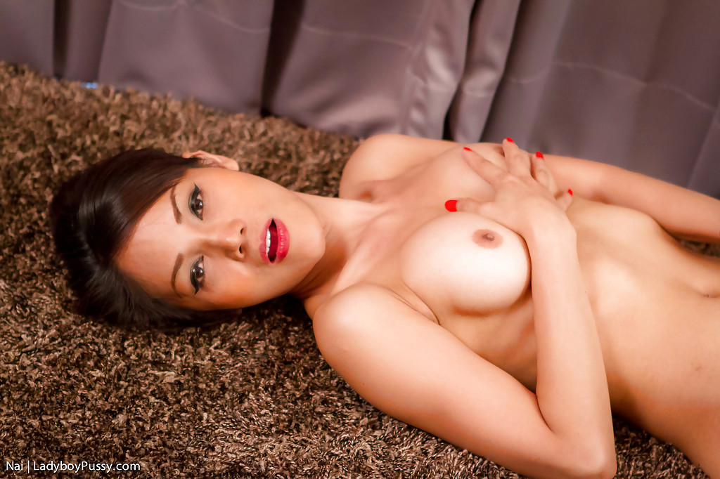 Charming Brunette Asian T-Girl Nai Shoving A Toy Up Her TGirl Pussy