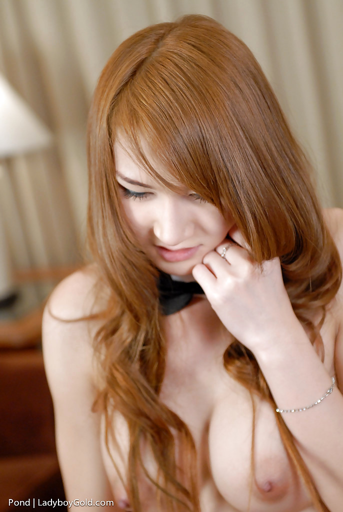 Cute Asian TGirl Pond 2 Jacks Off Shedick In Playboy Bunny Uniform