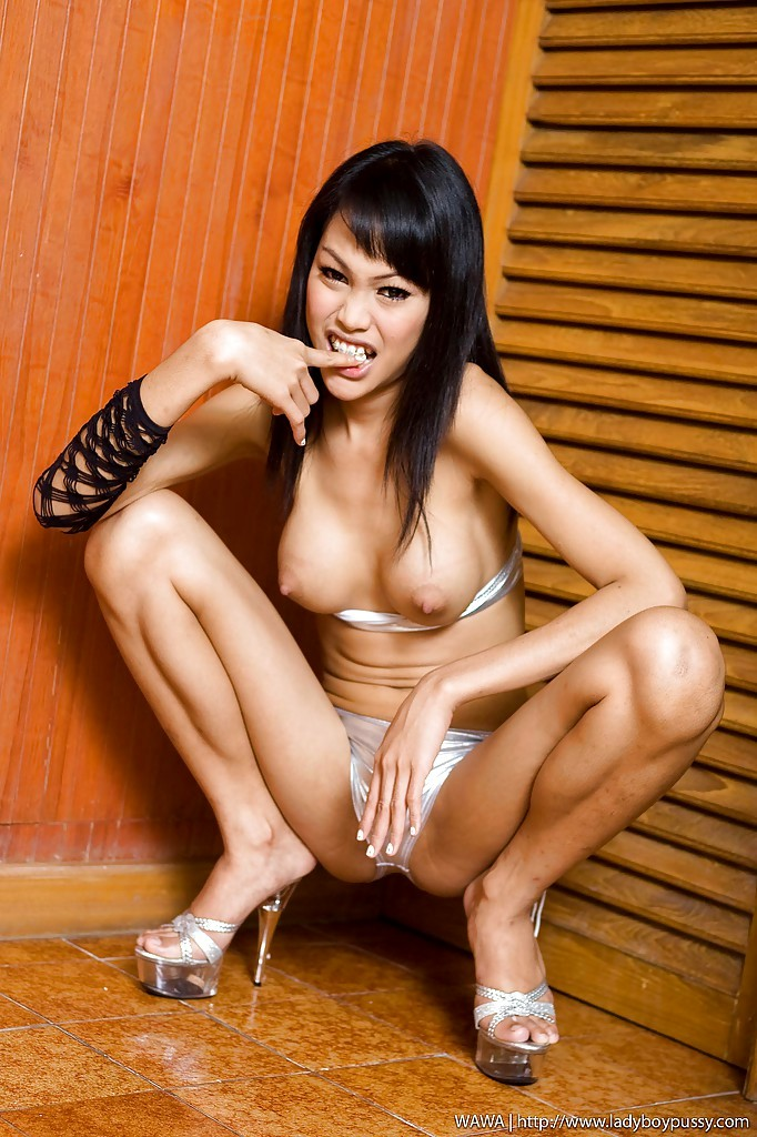 Filthy Asian Shemale Wawa Rubbing Her Inviting Pussy Wearing High Heels