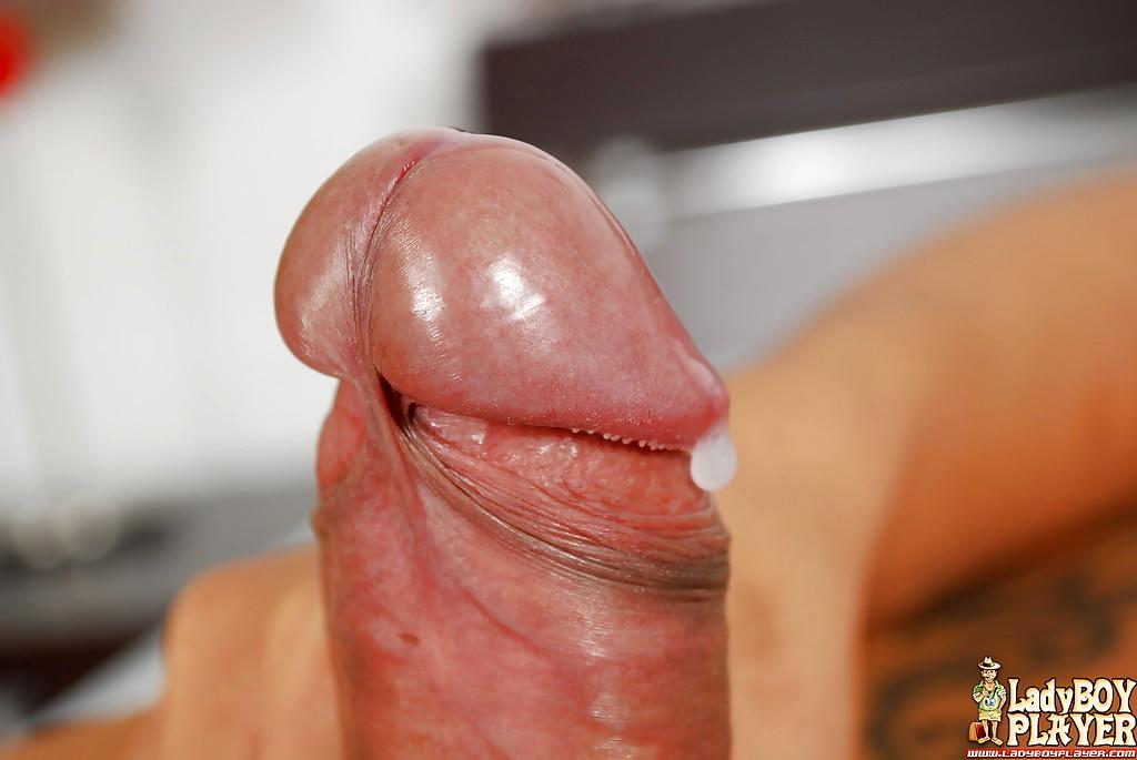Gorgeous Asian Ladyboy Poi Wanking Off Shaved Penis In Fishnet Stockings