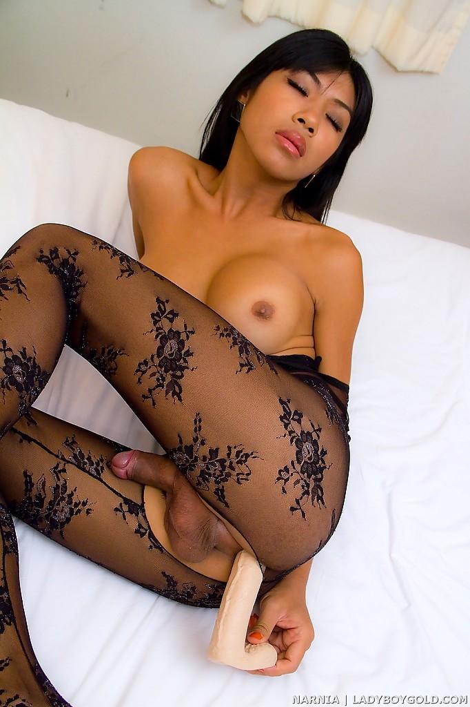 Gorgeous Asian T-Girl Narnia Bares Tiny Shecock Underneath Bodysuit