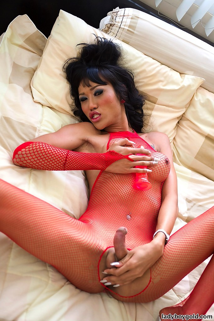 Gorgeous Thai T-Girl Pond Posing Hung Tool And Slender Body In Fishnets
