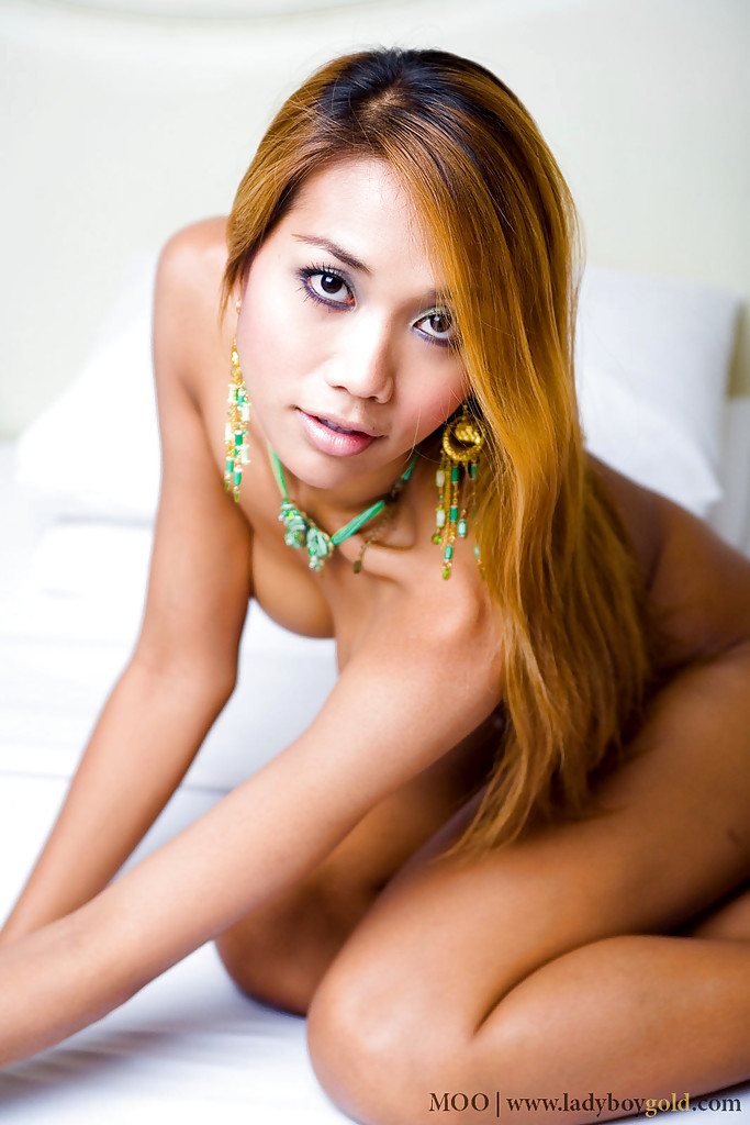 Huge Boobed Shemale Moo Toys Her Anus While Masturbating Off Ladyboy Dick