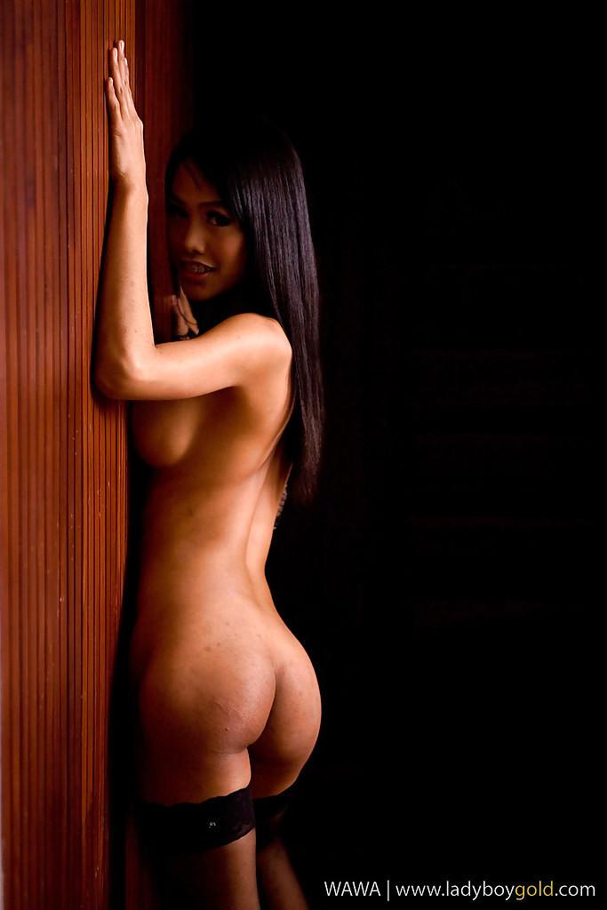 Hungry Asian Ladyboy Wawa Having Fun With Her Giant Vibrator