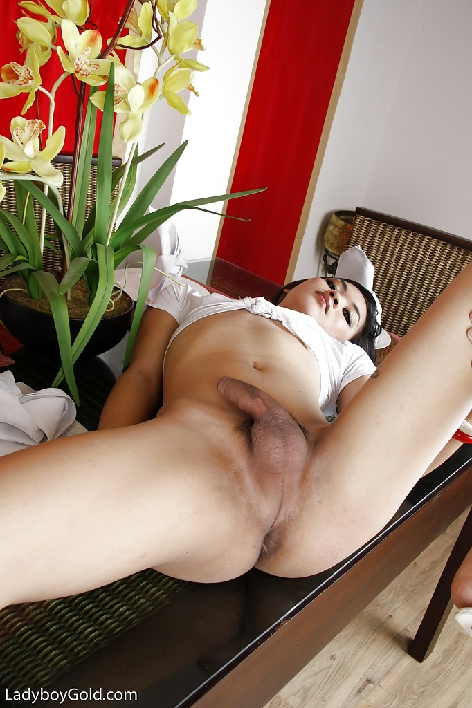 Kinky Shemale May In Middle Of Bisexual And Transsexual Threesome