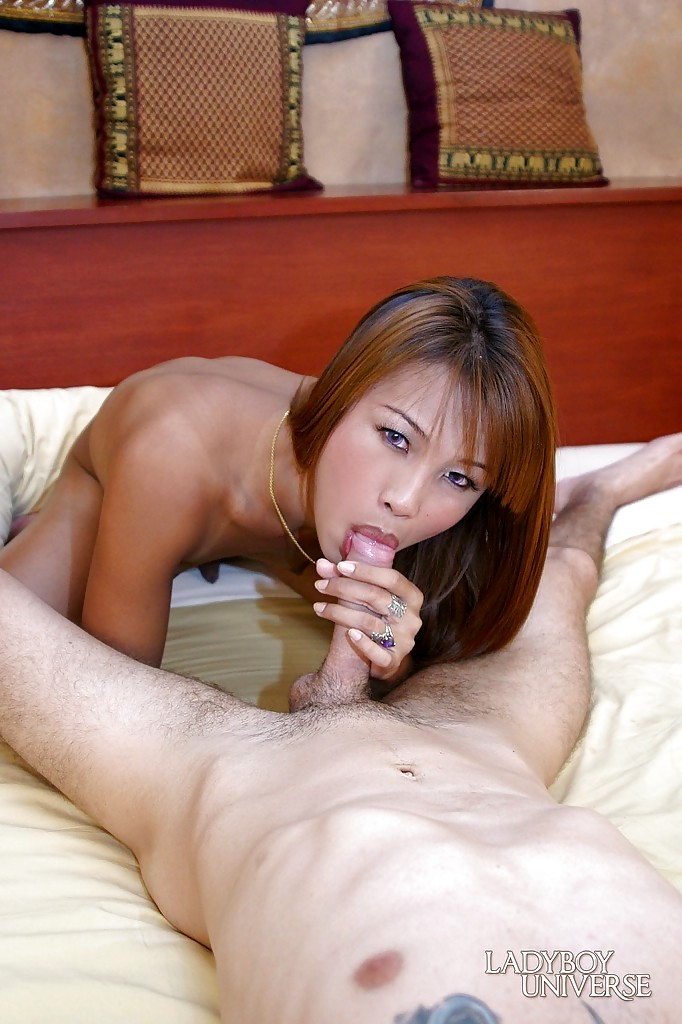 Kissable Asian Tgirl Bee M Giving Spicy POV Blowjob And Taking Cumshot On Tool