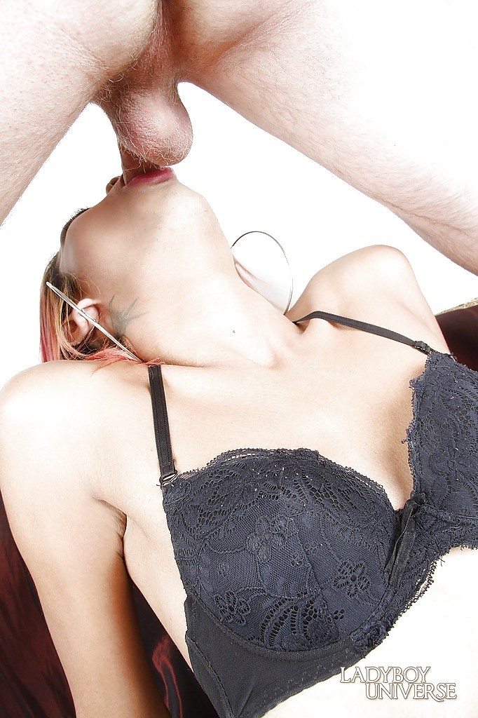 Luscious Thai Femboy Lu Getting Her Nice Face Ruined By A Rough Dick
