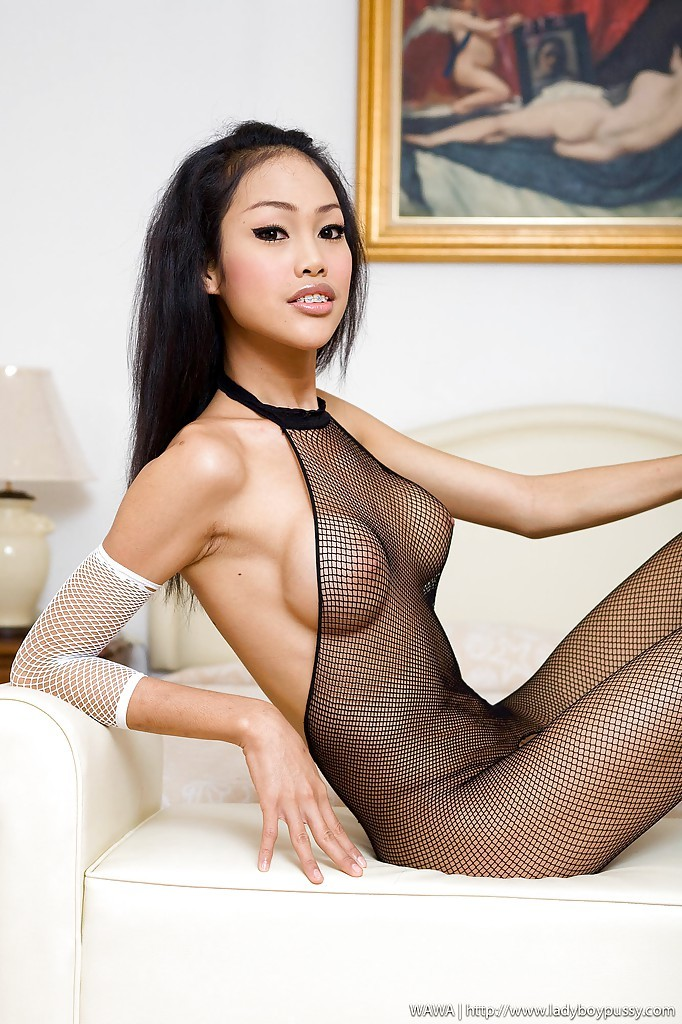 Naughty Asian Tgirl Wawa Showing Off Her Enormous Breasts And Rubbing Her Hairy Pussy
