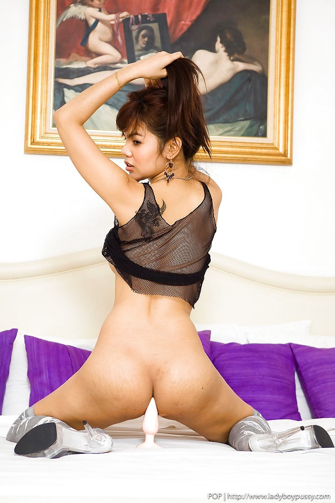 Naughty Thai TGirl Pop Wearing Stockings And Spreading Her Wet Pussy