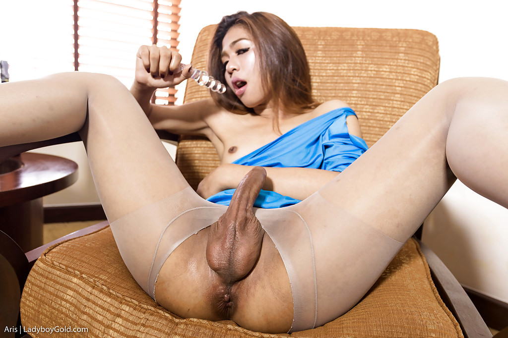 Pantyhose Adorned Thai T-Girl Aris Taking BB Anal From Guy With Enormous Tool