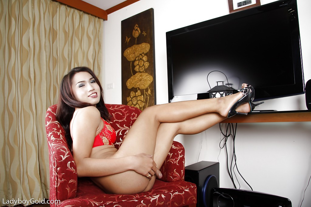 Perfect Asian TGirl Bird Spreads Her Legs To Jerk Off Hung Tool
