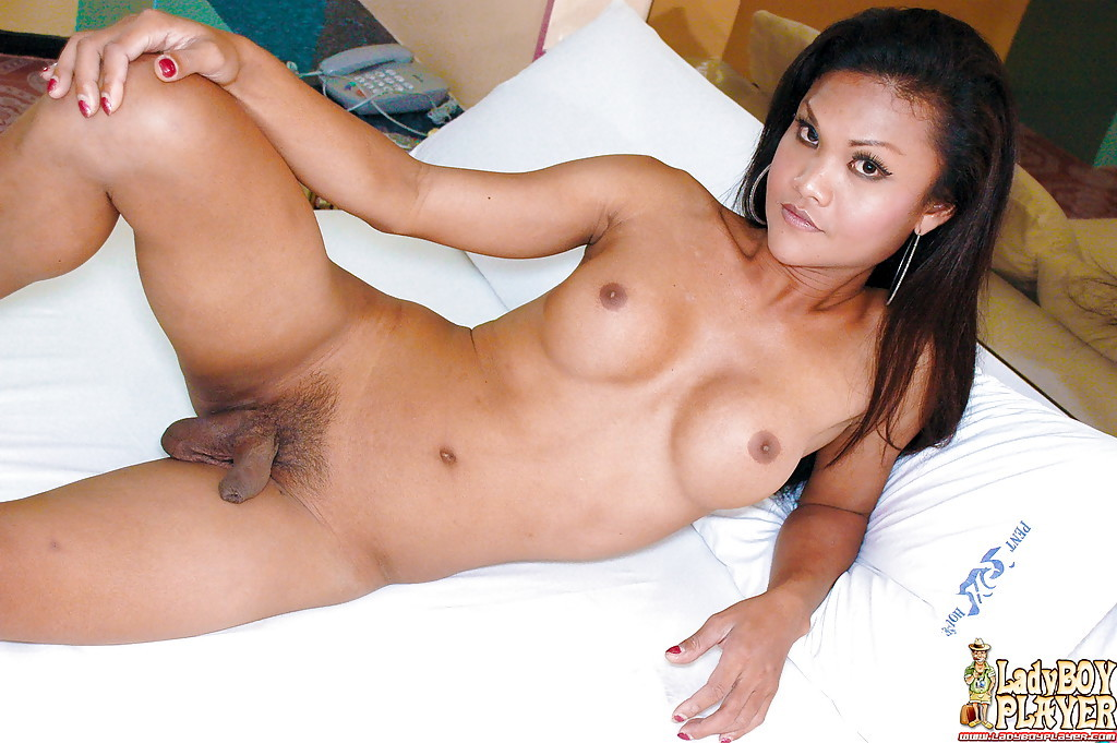 Perfect Brunette Asian Shemale Ming Baring Baring Massive Breasts And Large Shecock