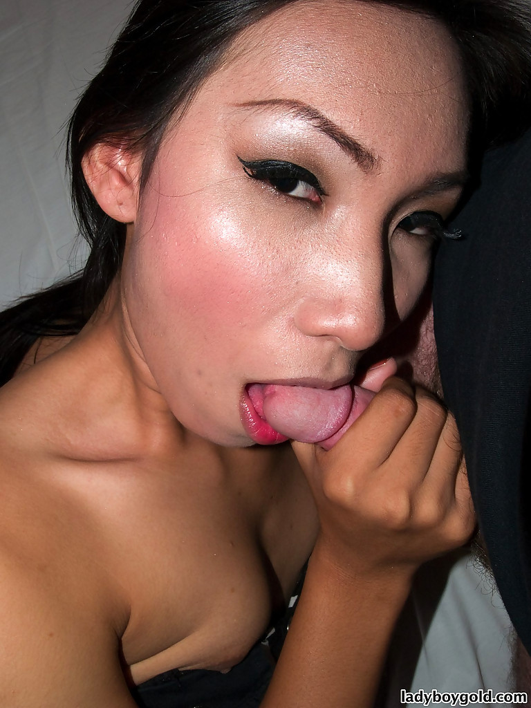 Perfect Thai T-Girl Nan Gives Bj Before Rough Bare Back Butt Banging