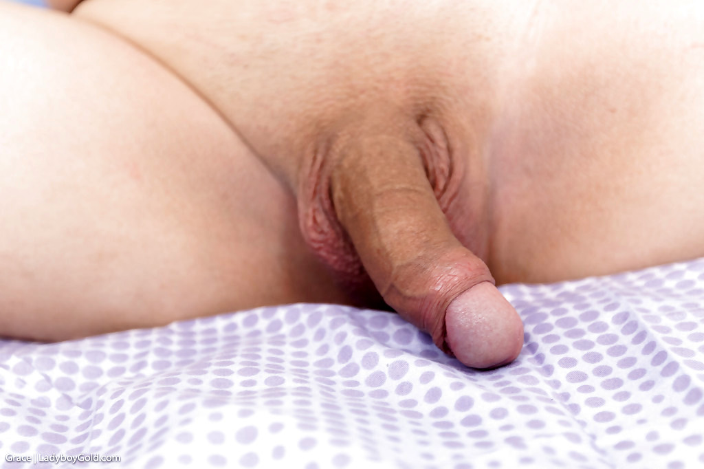 Pigtailed Teen Transexual Grace 2 Spreading Butthole For No Condom Bum Banging