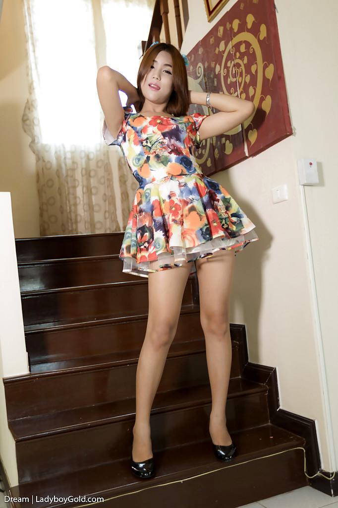 Redhead Thai Teen Tgirl Dream 2 Taking Anal Creampie After BB Butt Banging