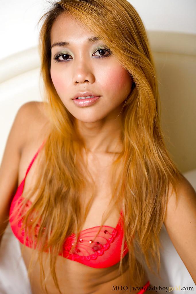 Sensuous Thai Shemale Moo Masturbating Off Tgirl Penis In Panties And Nylons