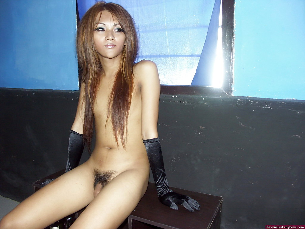 Slender Thai Shemale With A Shaved Ass-Hole Stroking Herself Passionately