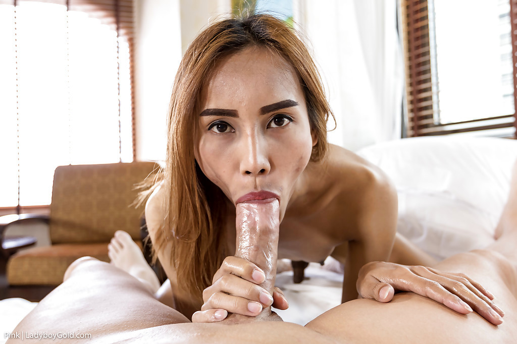 Slender Thai Tgirl Pink 2 Taking Hardcore No Condom Anal Sex From Dude