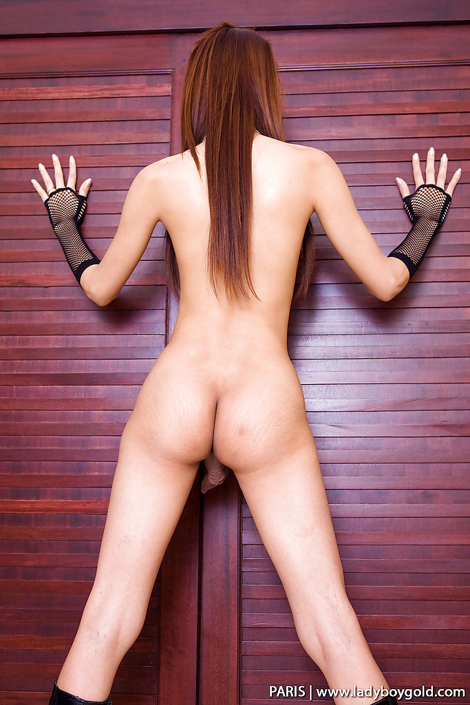 Slim Asian Transexual Showing Off Her Curved Dick In High Heels