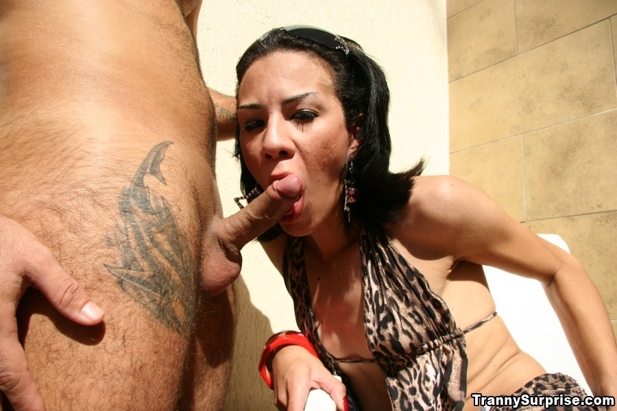 Slim Latina T-Girl Dany Craves Getting Ass-Hole Pummeled By A Big Penis