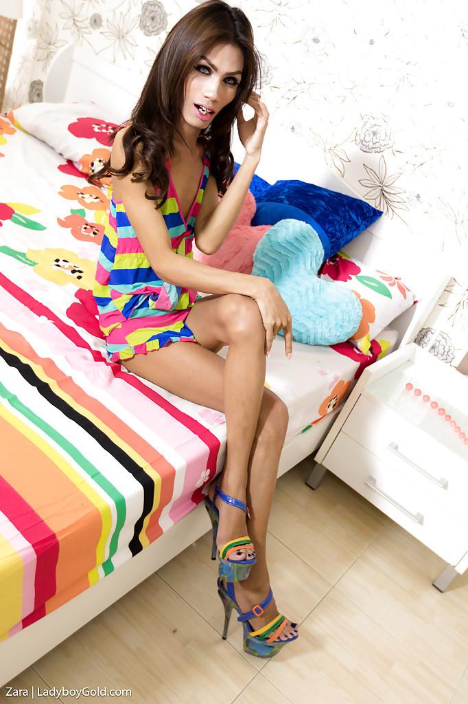 Slim Thai Femboy On Male Bare Back Asshole Nailing With Zara 2