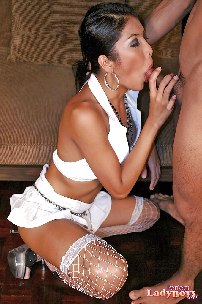 Slutty Asian Transexual Cintya Pleasing A Dude With Her Mouth In Stockings