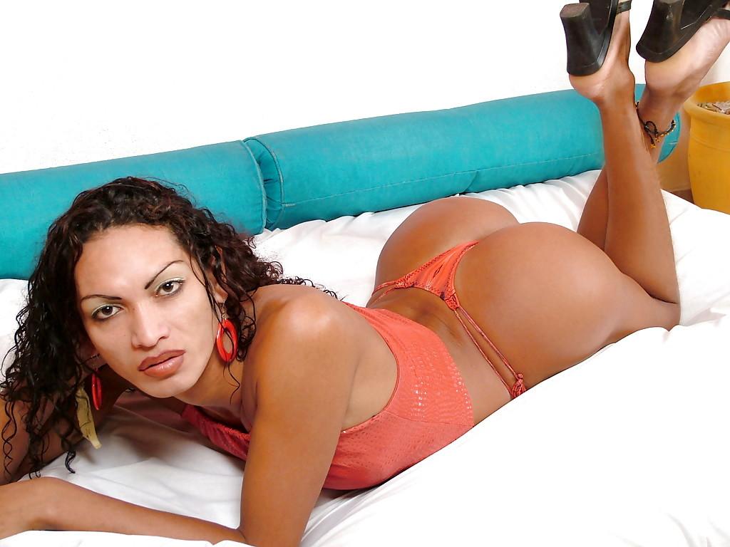 Solo Ebony Femboy Camile Alencar Posing Non Nude In Panties