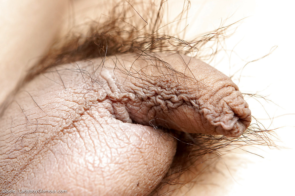 Solo Poses From Voluptuous Femboy Gisele And Her Tiny Hairy Shecock