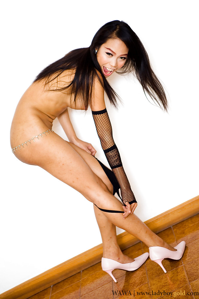 Starved Little Thai Transexual Wawa Fingering Her Butt And Stroking Her Tool