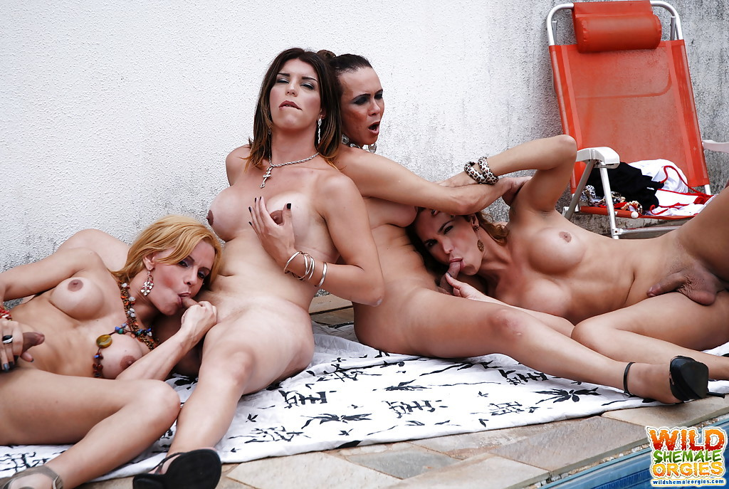 T-Girl On TGirl Blowjob Action With Adryella Vendramine And Alexia Firenze