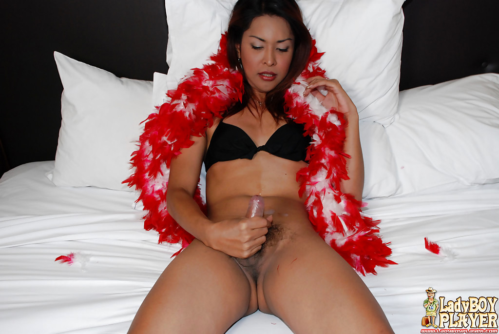Thai Shemale May Posing Solo In Bra And Panty Set Before Jerking