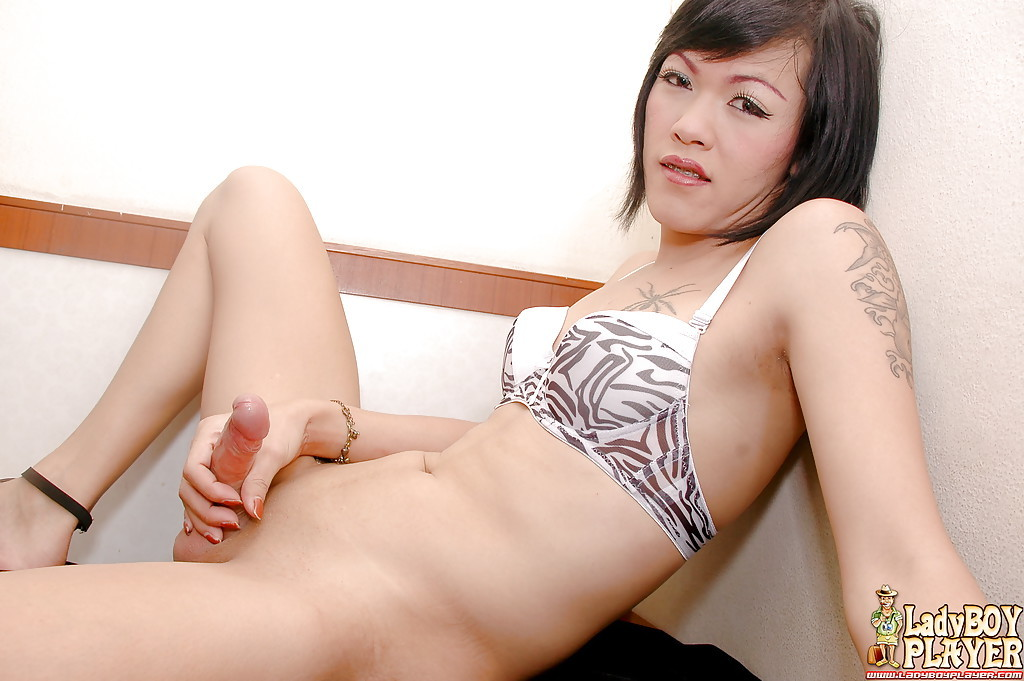 Thai T-Girl Little Masturbates Large Tool In Lingerie Until Cumshot