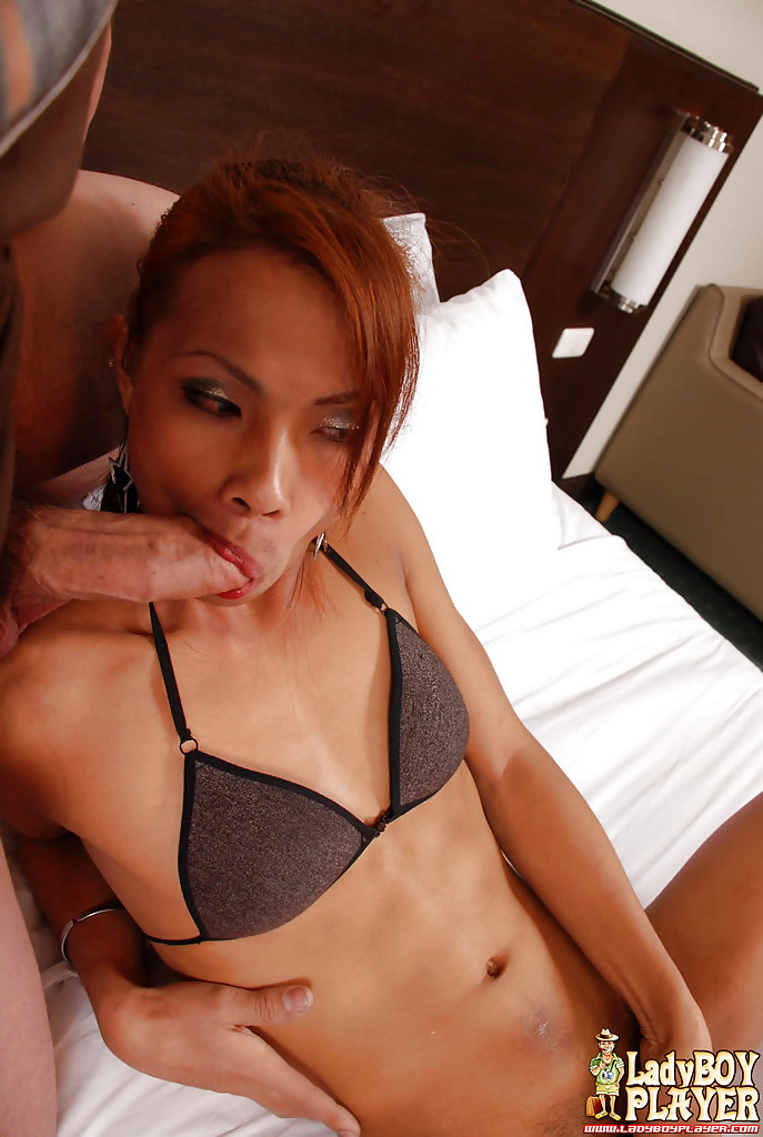 Thai Tgirl On Male Blowjob Provided By Enormous Penis Jerking TS Lina