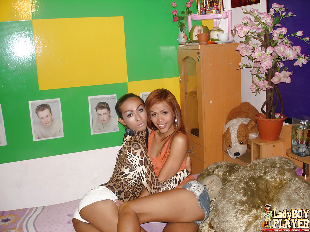 Thai Tgirl On Transexual Sex With Slim Femboys Give And Sara