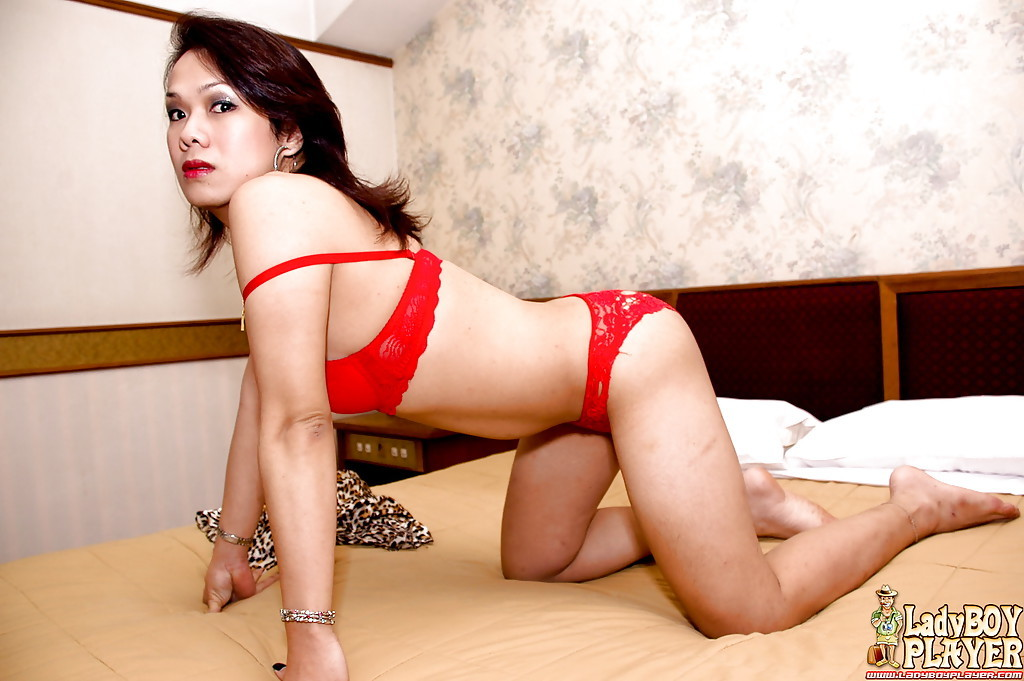 Thai Transexual Num Letting Tinie Breasts Fall Free From Bra Before Wanking