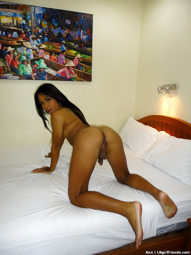 Thin Asian Shemale Ann Gets Naked In Motel Room And Spreads
