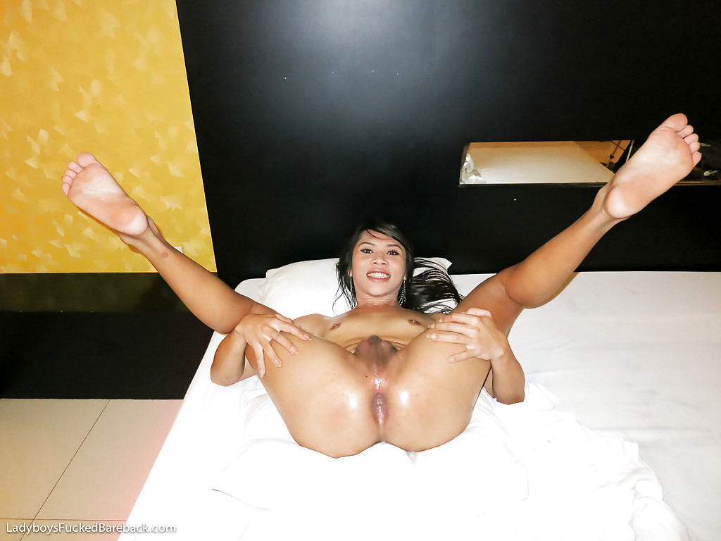 Tinie Boobed Transexual Gets Her Horny Ass Nailed Bare Back