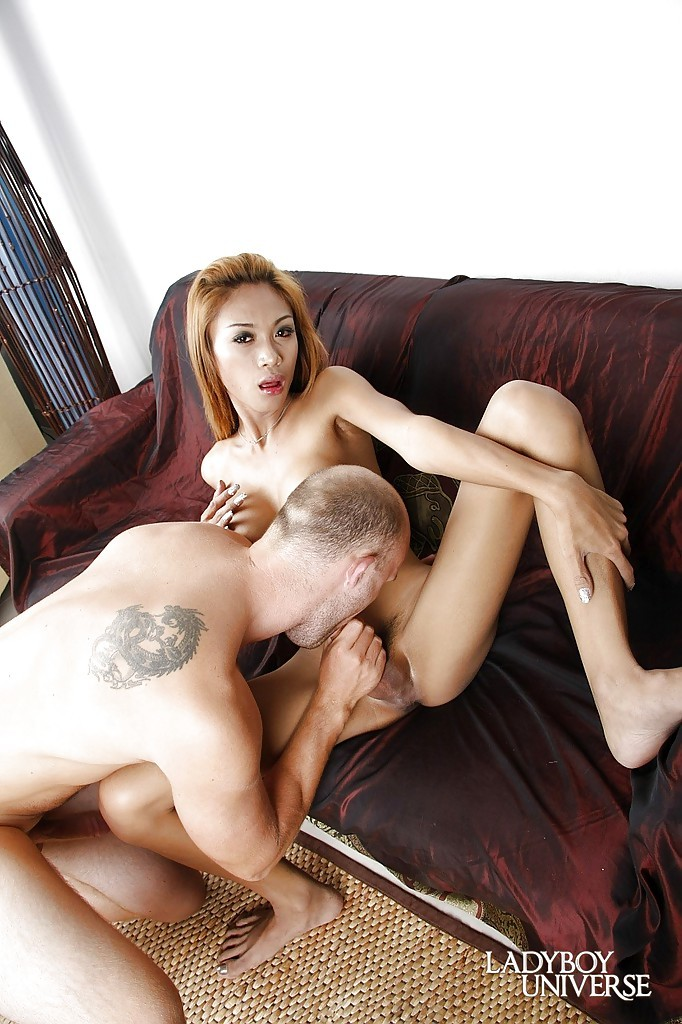 Titillating Asian Ladyboy Bun Stroking Her Massive Stiffy And Gagging On A Penis