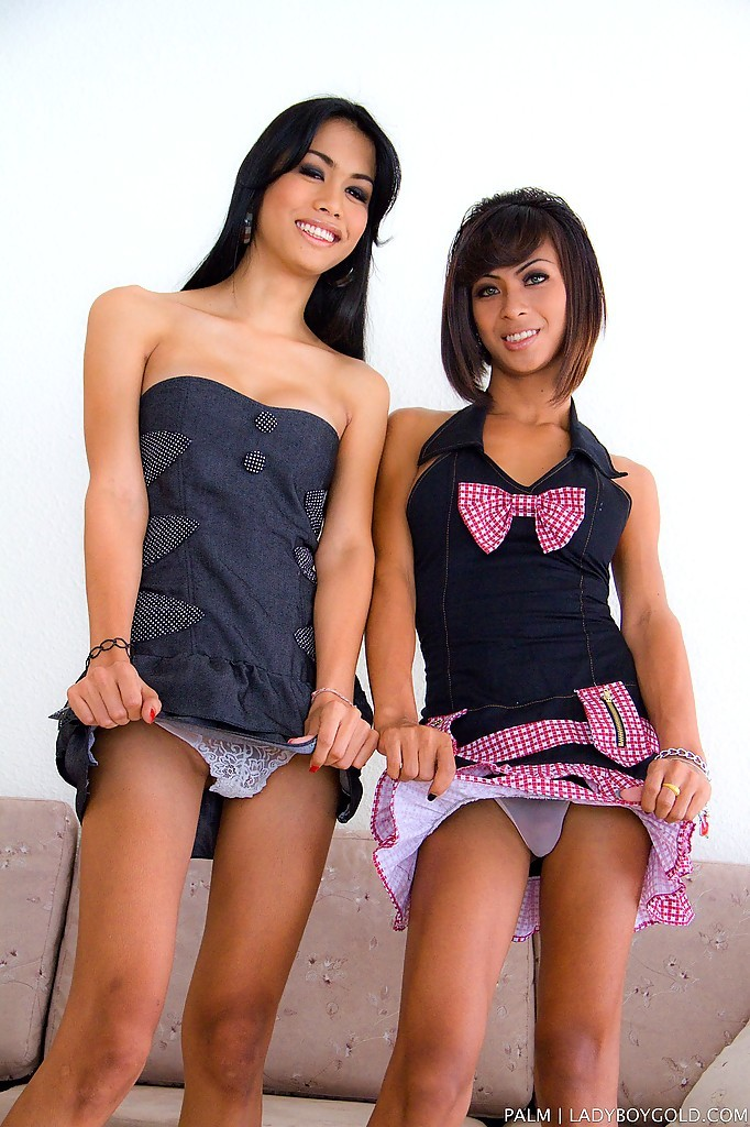 Wild T-Girl On Transexual Action With Cute Tgirl Palm And T-Girl Gf