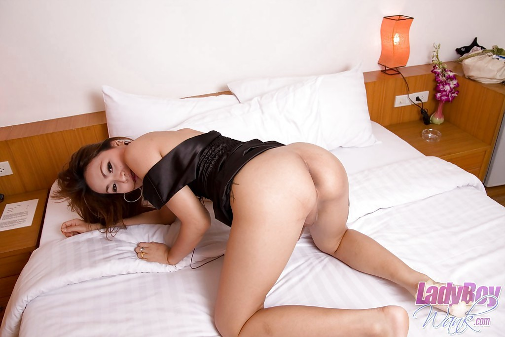 Young Brunette Asian T-Girl Perfect Masturbating Off On Her Bed