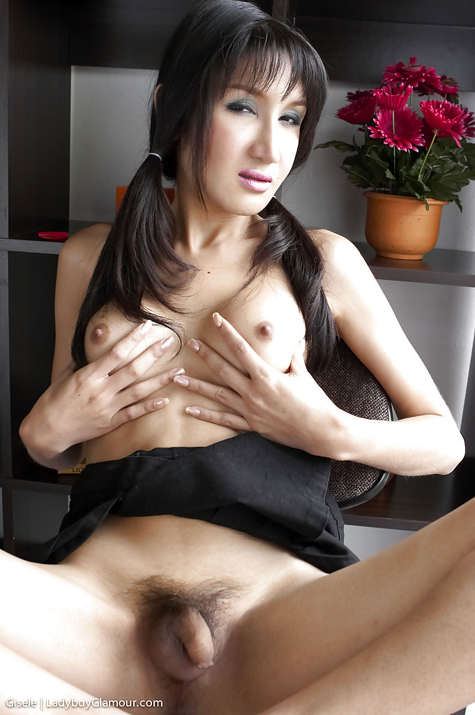 Young TGirl Gisele Looking Seductive In Pigtails While Spreading Legs